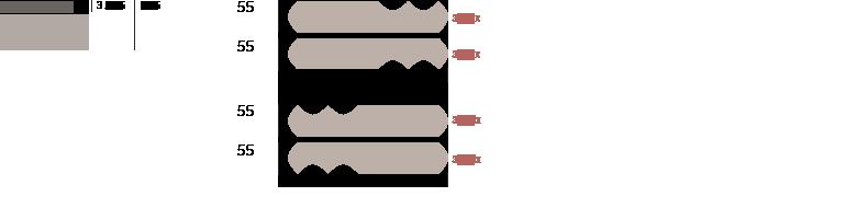 slide heritage disegno